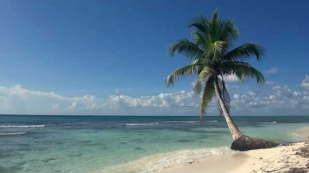 Relaxation: Tranquil Beach - download mp3